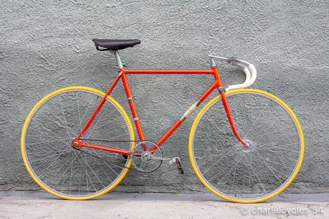 Speciale Corsa Pista Antonio Maspes